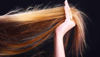 12 продуктів, що допоможуть зупинити випадіння волосся