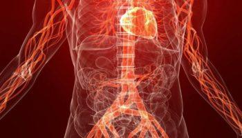 Поганий кровообіг, постійно холодні руки і ноги: 7 потужних засобів, що допоможуть миттєво!