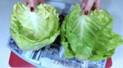 4 кроки приготування конвертиків з молодої капусти. З начинкою!